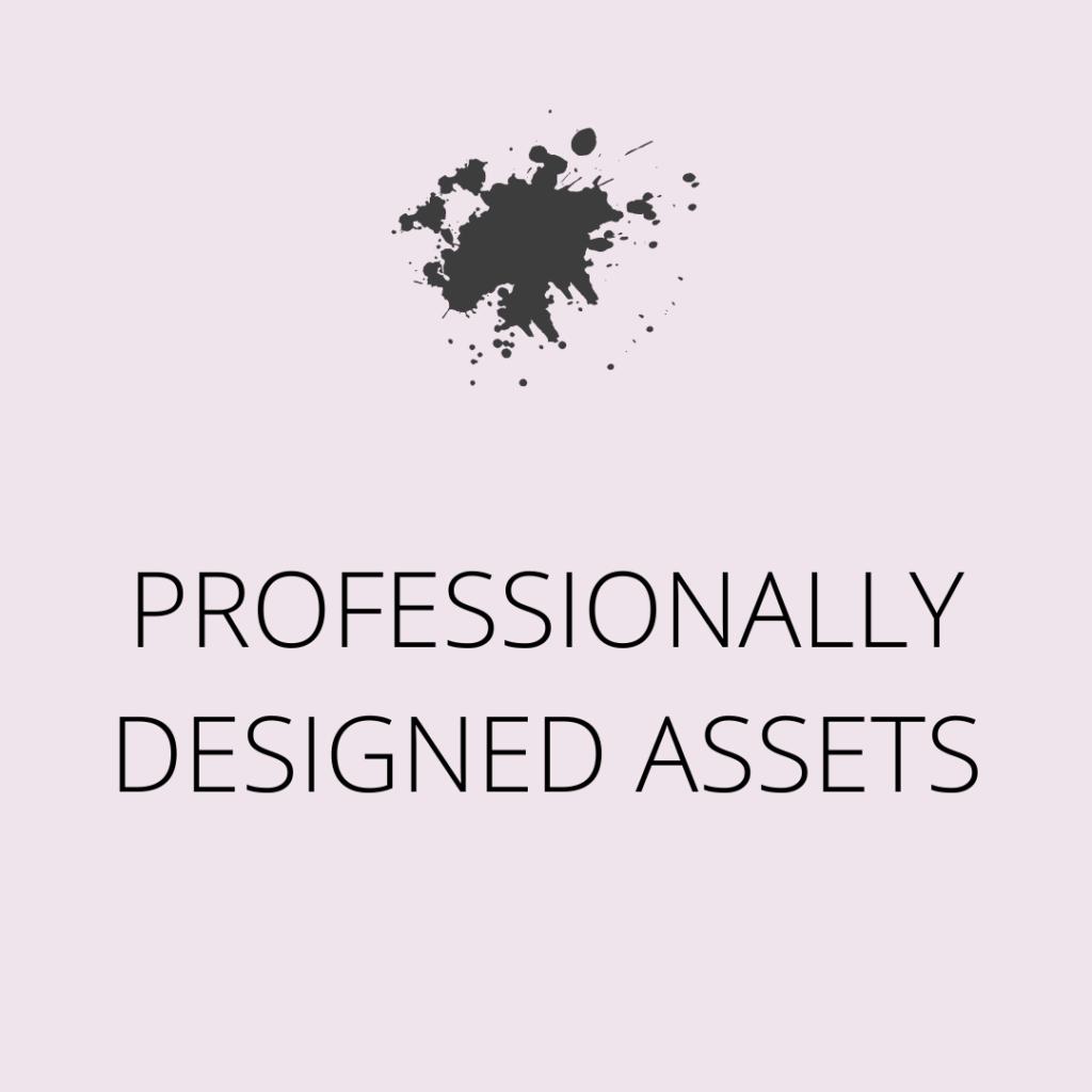 PROFESSIONALLY-DESIGNED-ASSETS